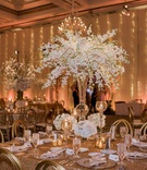 tall centerpiece of dendrobium orchids in spray