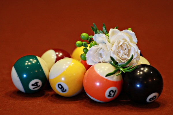 White rose and hypericum berries on pool table