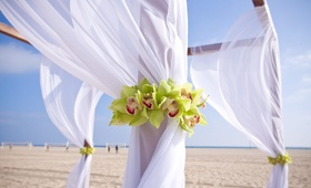 White drapery on beach ceremony altar with orchids
