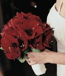 Bride holding crimson lilies wrapped in white