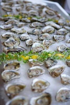 Sea Side Oysters Battle Point Oysters Sewansecott Oysters on ice hors d'oeuvres appetizers