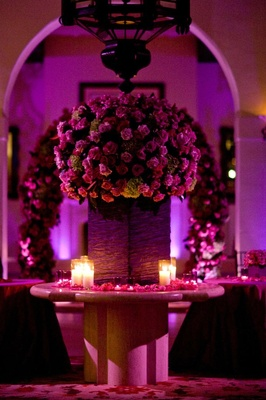 Purple and pink flowers and lighting