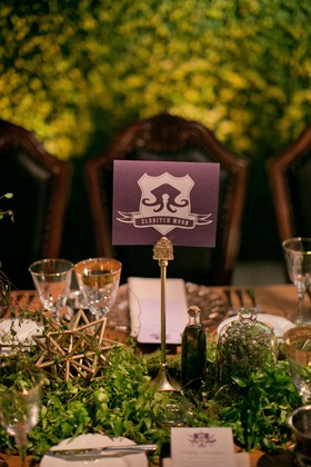 Alexis Cozombolidis and Hunter Pence wedding reception gold stars greenery terrariums trading game