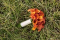 Grass lawn with bouquet of all orange calla lily flowers calla lilies and white ribbon wrap