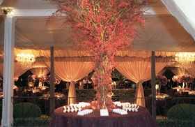 Tree of red orchids surrounded by wedding escort cards