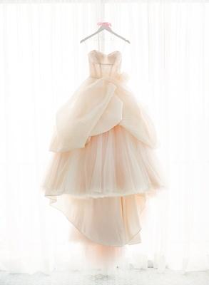 Blush Wedding Dress By Lazaro On White Hanger