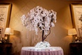 wedding reception escort card table pink linen tall orchid tree crystal strands branches
