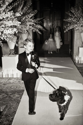 Black and white photo of groom's son ring bearer and dog with flower collar ceremony