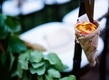 Orange flower petals in birch bark cone at ceremony