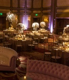 Reception space featuring orchid centerpieces and elegant tufted lounge furniture seating