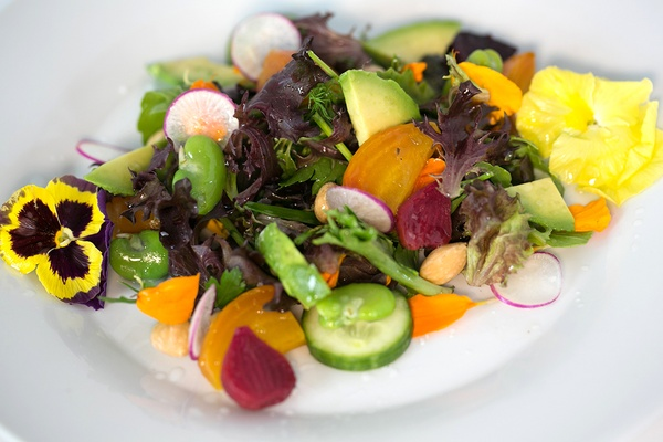 Garden salad with heirloom baby beets, fava beans, and sweet onion-poppy seed vinaigrette.