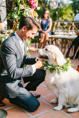 wedding ceremony outdoor hummingbird nest ranch pet friendly golden retriever dog with greenery