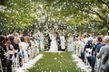 explosion of rose petals as bride and groom kiss