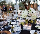 Wedding reception centerpiece with feathers and grapes