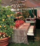 Outdoor tent reception with iron chandelier and greenery