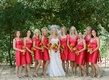 Bridal party outside in Sonoma, California