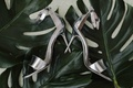 bride wedding day shoes silver heels sandals ankle toe strap on tropical green leaf