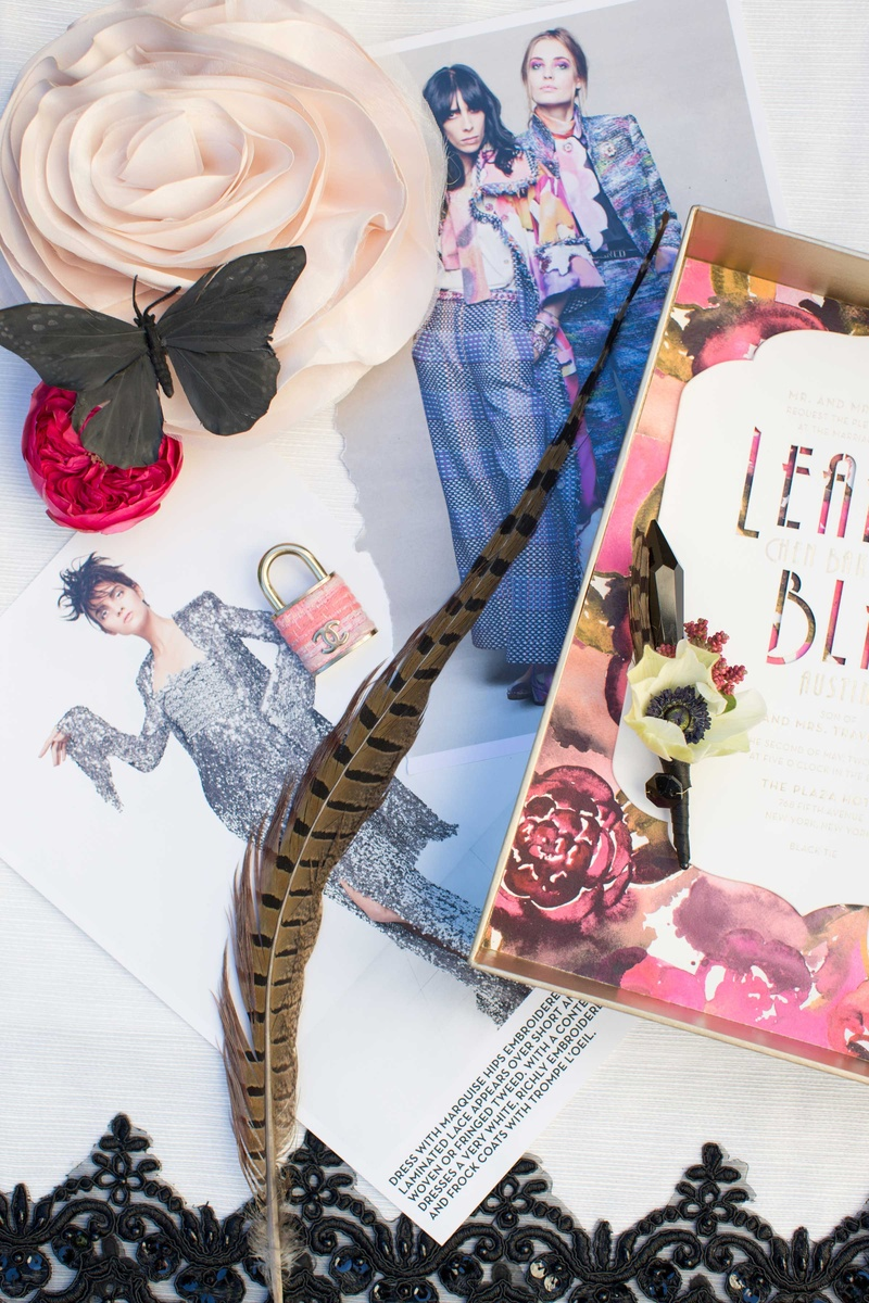 feather fashion clothes ad print black butterfly pink rose stationary
