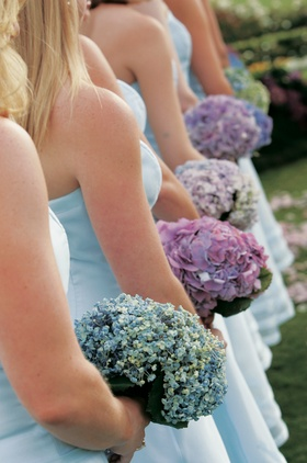 Bridesmaids held hydrangea flowers in different colors