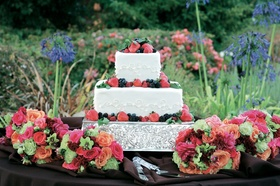 Two layer white cake with fresh fruit on top