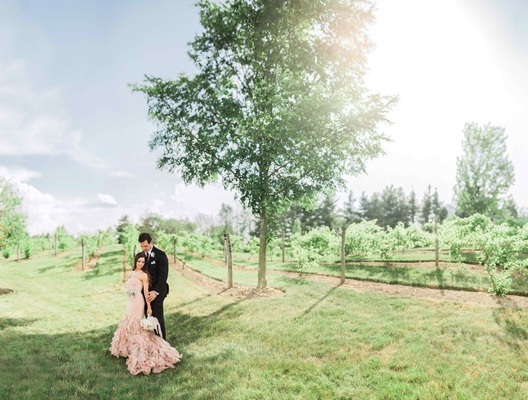 bride in blush vera wang mermaid ruffled gown, groom in black by vera wang tux, open field, winery