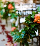 Garden wedding ceremony garland decoration