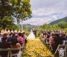 Yellow flower petals at North Carolina Highlands wedding