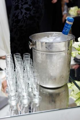 Chilled Grey Goose vodka and shot glasses