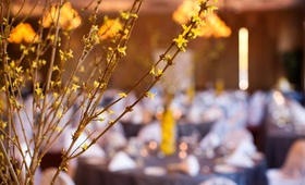 Branch with yellow flowers at spring wedding reception