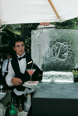 Bartender pours martini down ice sculpture into martini glass