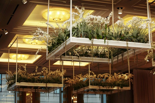 White orchids on platforms suspended from ballroom ceiling