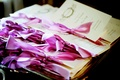 Wedding programs with golden script and bright pink ribbons