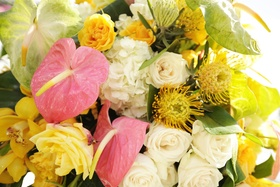 Hydrangea, protea, orchids, and roses