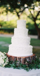 White wedding cake with white sugar flowers on tree trunk