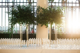 large display of greenery on gold stands above champagne flutes for escort cards