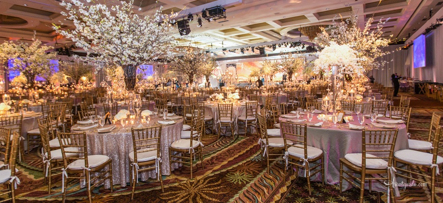 Traditional Indian Ceremony + Opulent Reception in Florida ...