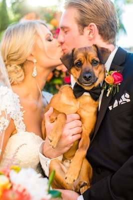 couple kiss holding puppy ring bearer cute in wedding pets southern california love