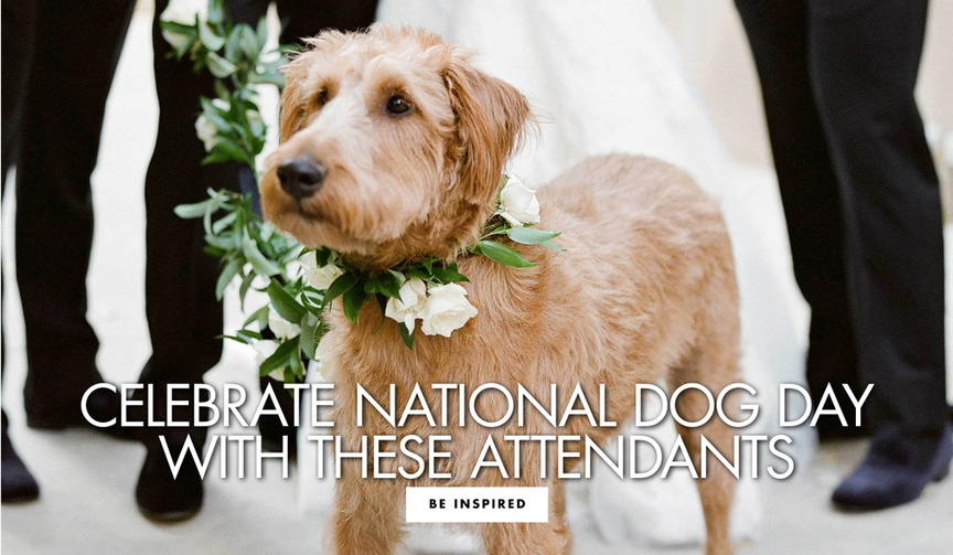 celebrate national dog day with these furry attendants dogs and puppies in real weddings