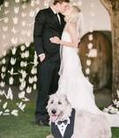Bride in a strapless Hayley Paige dress and veil kisses groom, dog in a tuxedo bib sits nearby