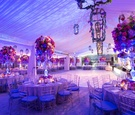 Tented wedding reception with purple and pink lighting and purple and pink flowers