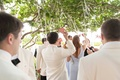 Guests grabbing escort cards in shapes of sea shells hanging from tree cocktail hour