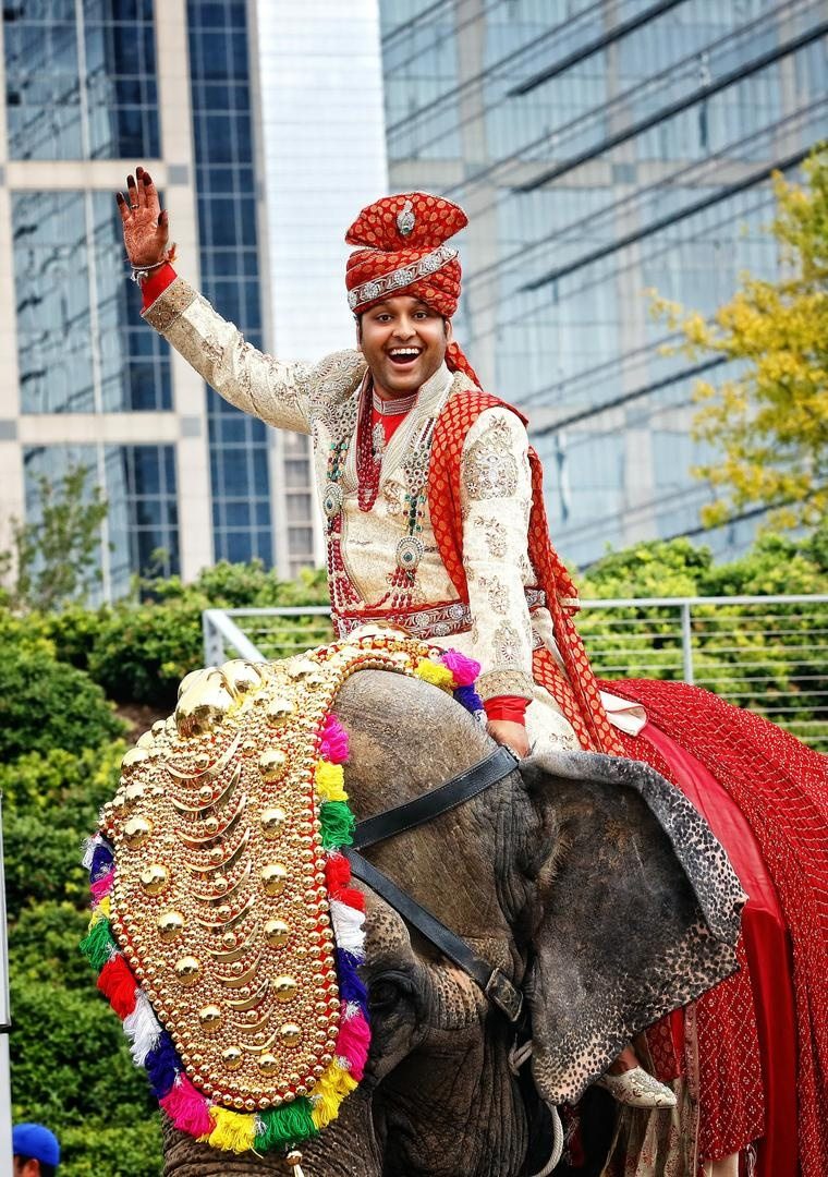 Indian groom arrives by elephant to his wedding ceremony