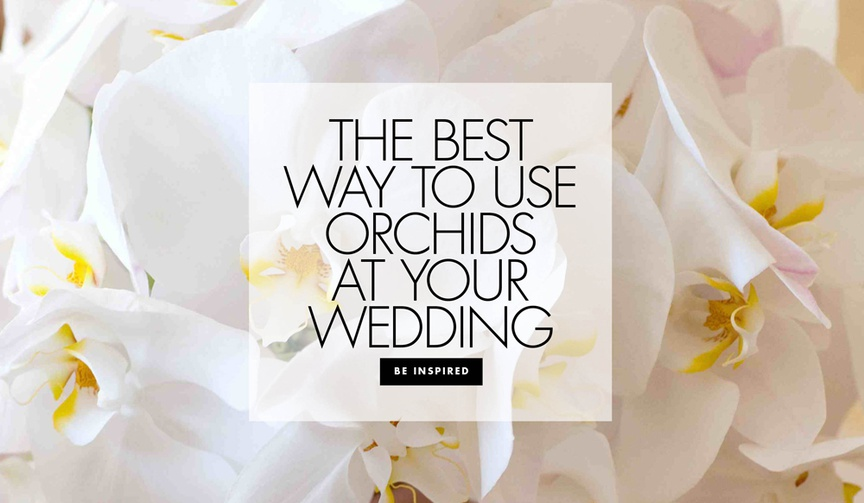 different ways to use orchids in your wedding decor