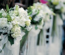 bunches of white flowers displayed along aisle