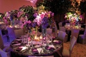 Indoor reception with tropical and colorful flower arrangments