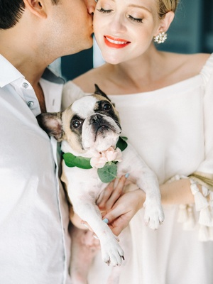 french bulldog with collar of leaves and a blush flower