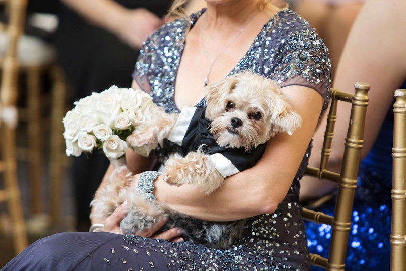 brides mom holding puppy in tux and white pink bouquet ceremony