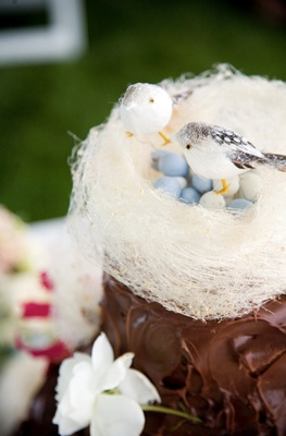 Chocolate wedding cake with avian theme