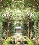 mirrored image verdant outdoor reception area napa valley woodlands wooden chairs green linens