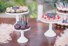 Wedding chocolate cake pops and tarts on wooden table